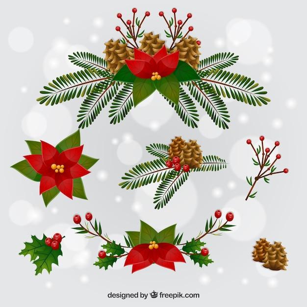 Bonitas flores de navidad | Descargar Vectores gratis