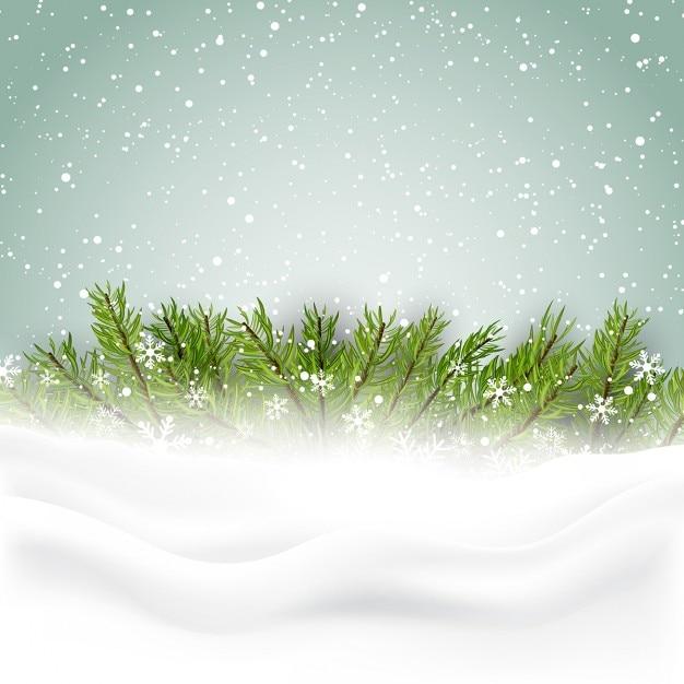 Bonito fondo con hojas de pino para navidad | Descargar Vectores gratis