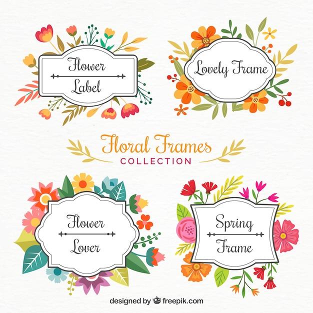Bonitos marcos de flores pintados con acuarelas | Descargar Vectores ...