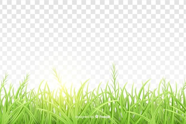 Borde hierba verde diseño realista vector gratuito