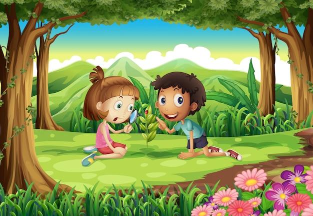 Un bosque con dos niños estudiando la planta en crecimiento con un insecto. vector gratuito