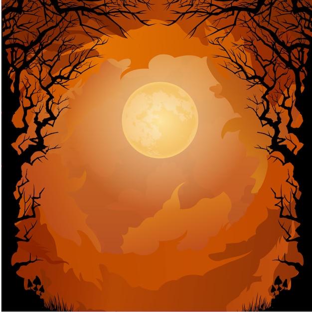 Bosque Oscuro Con Fondo Naranja