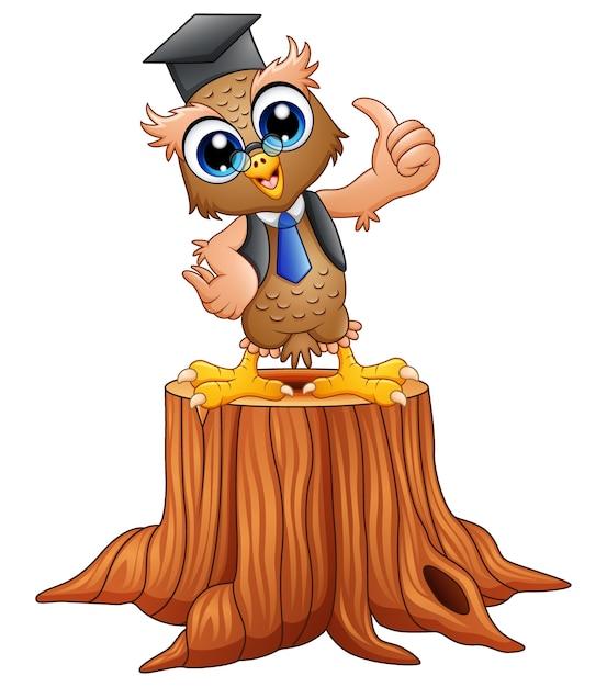 Búho sabio de la historieta en casquillo de la graduación en tocón de árbol Vector Premium