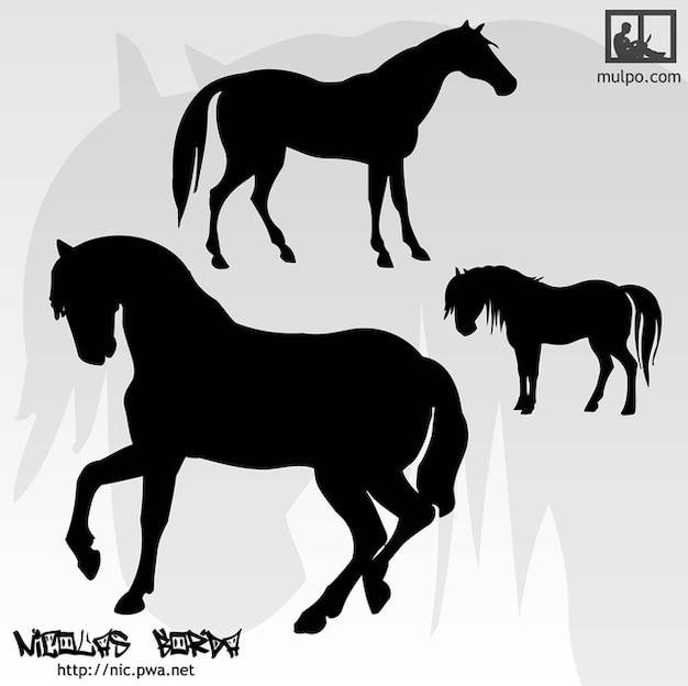 caballos de siluetas Vector Gratis