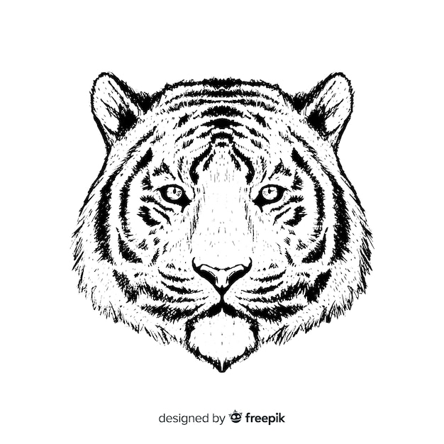 Cabeza de tigre vector gratuito