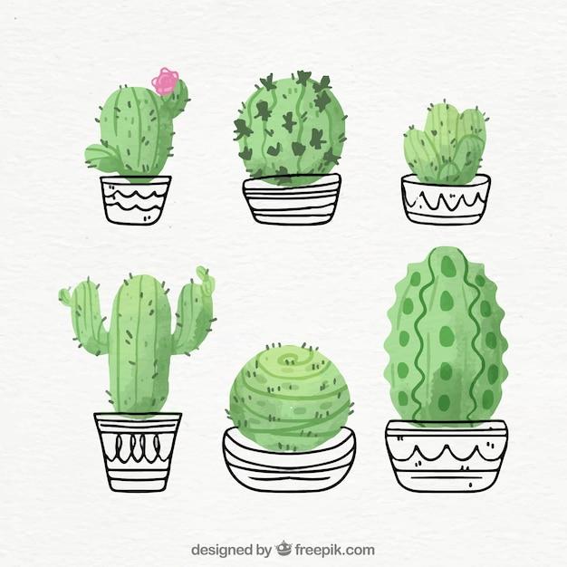 Cactus dibujados a mano con estilo divertido Vector Premium