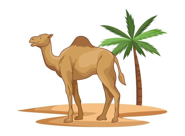 Camello en el desierto con dibujos animados de palmera aislado Vector Premium