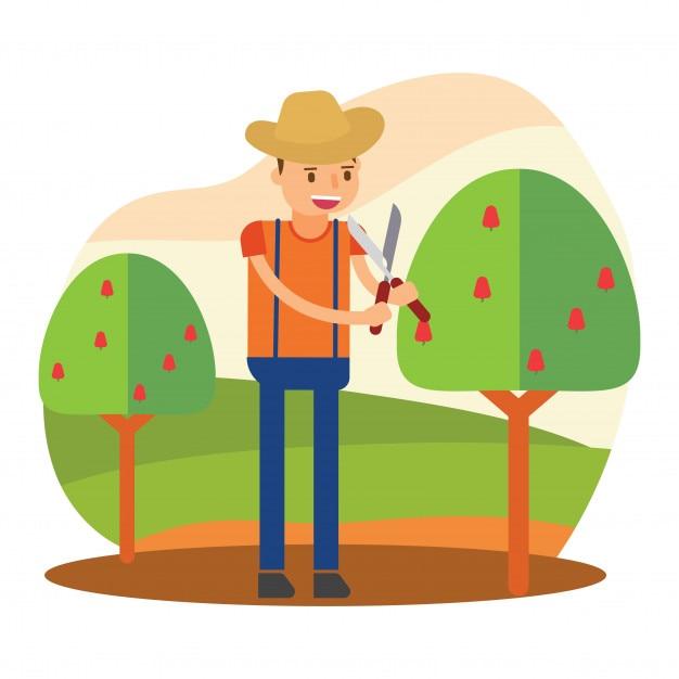 Campesinos Campesinos Agricultor Jardinero Agricultor Cosecha