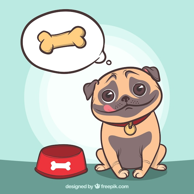 Persona  Dog Food