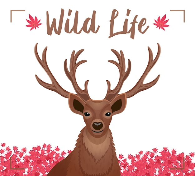 Cartel decorativo de vida salvaje con closeup querida cabeza con cuernos astas flores rosadas planas vector gratuito