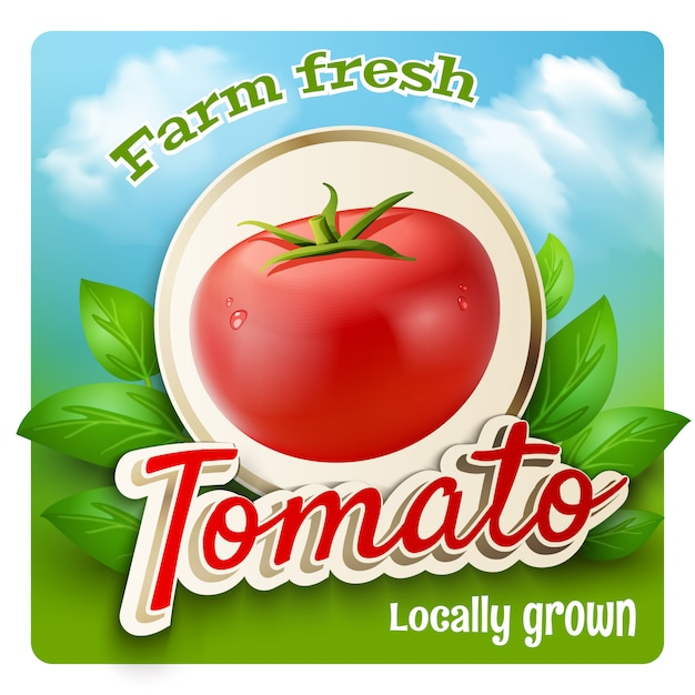 Cartel promo de tomate vector gratuito