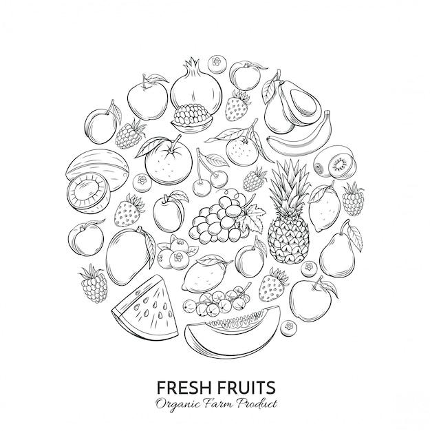 Cartel redondo composición con frutas dibujadas a mano Vector Premium