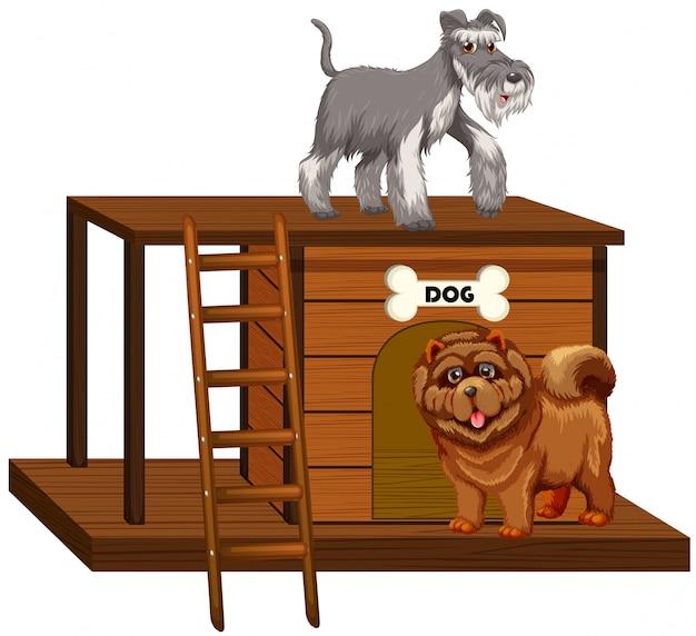 Casa de perro con lindos perros aislados vector gratuito