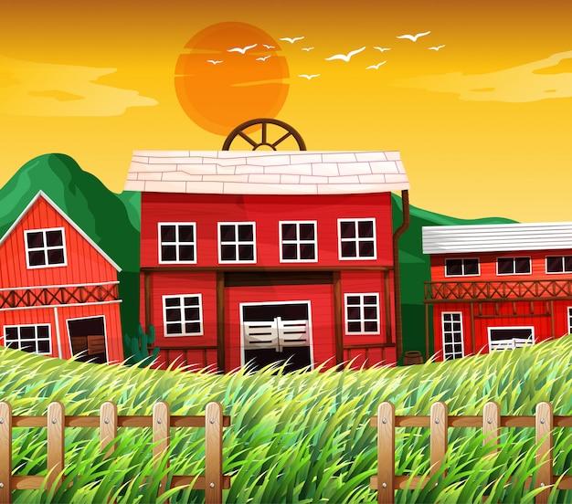 Casas rurales con escena de graneros Vector Premium