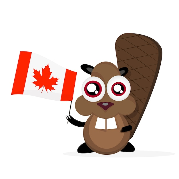 Castor de dibujos animados feliz con bandera canadiense Vector Premium