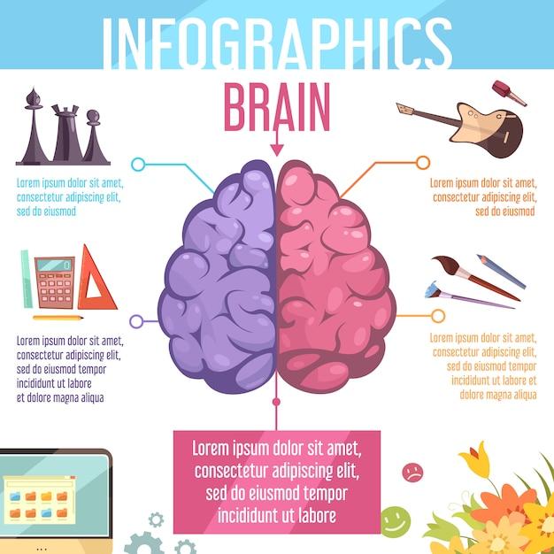 Cerebro humano izquierdo y derecho hemisferios cerebrales funciones infografía dibujos animados retro educación aprendizaje ayuda cartel ilustración vectorial Vector Premium