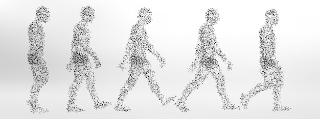 Ciclo de paseo corporal basado en la molécula   Descargar Vectores ...