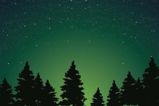 Cielo Nocturno Estrellado Sobre La Ilustración De Vector