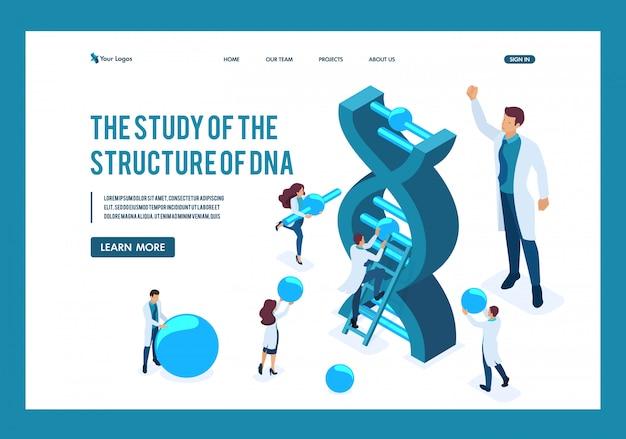Los Científicos Isométricos Están Investigando La Estructura Del