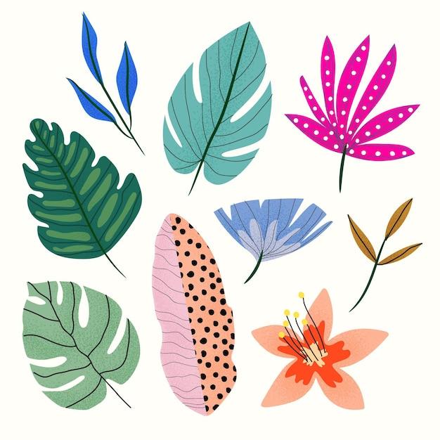 Colección abstracta de hojas tropicales vector gratuito