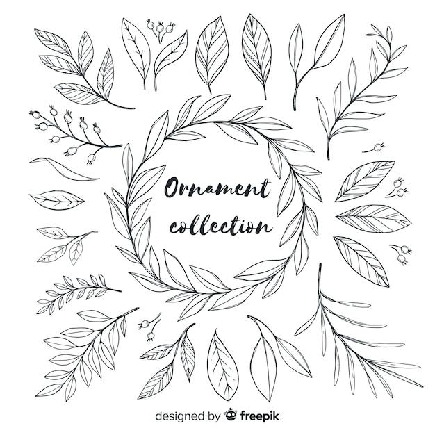Colección de adornos dibujados a mano de hojas vector gratuito