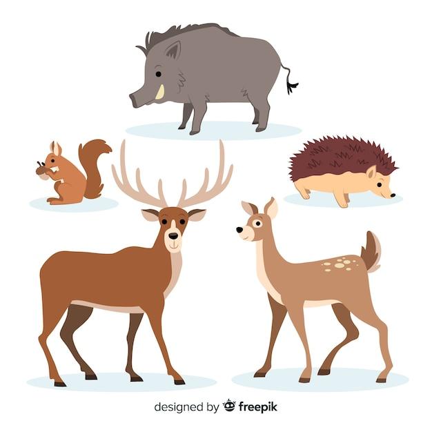 Colección de animales de bosque dibujados a mano vector gratuito
