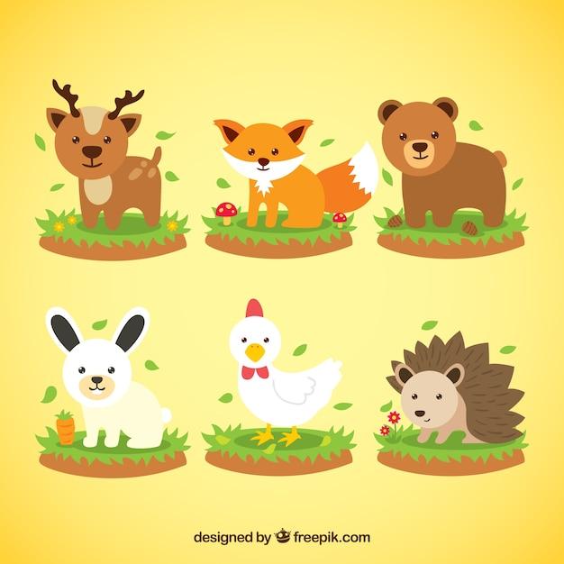 Colección De Animales De Primavera Descargar Vectores Gratis