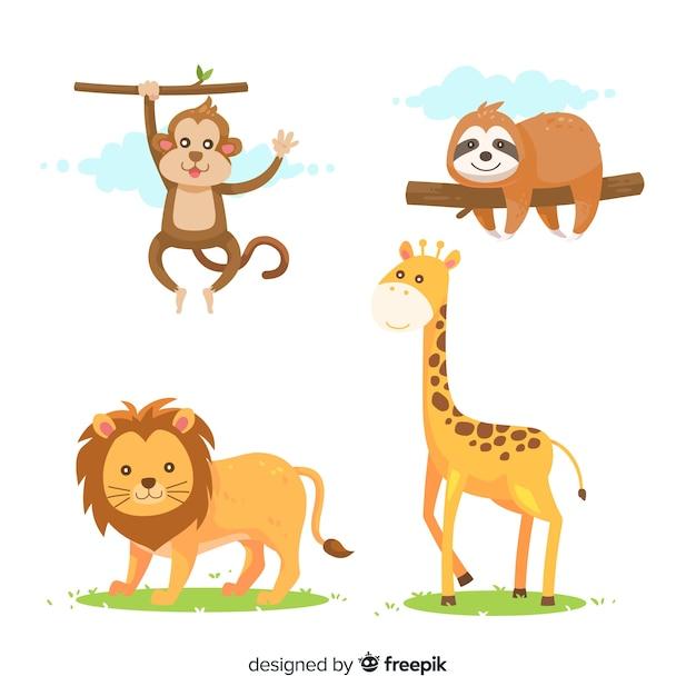 Colección de animales tropicales en diseño plano Vector Premium