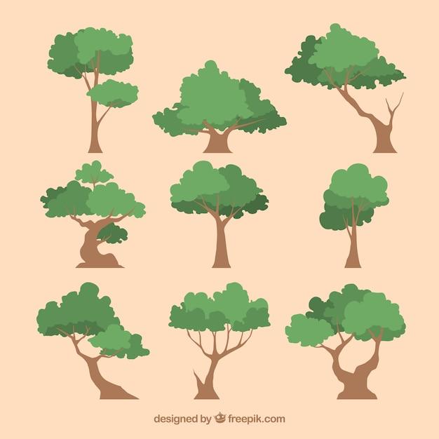Colección de árboles en estilo 2d vector gratuito