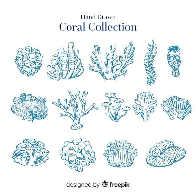 Colección sin color coral dibujado a mano vector gratuito