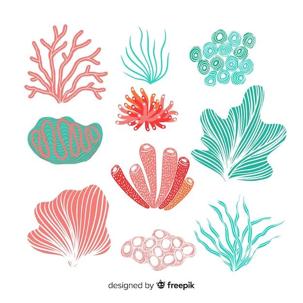 Colección coral dibujado a mano vector gratuito