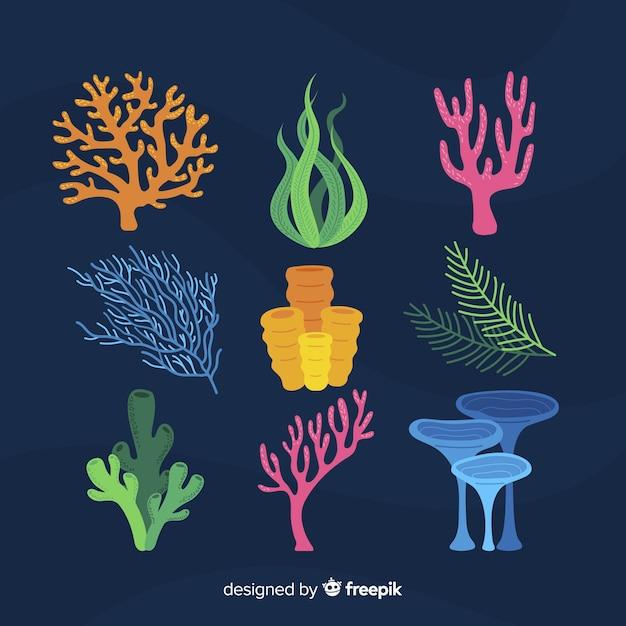 Colección de corales dibujado a mano vector gratuito