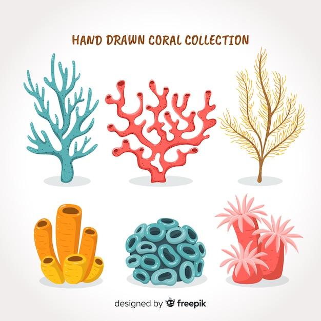 Colección de corales dibujados a mano vector gratuito