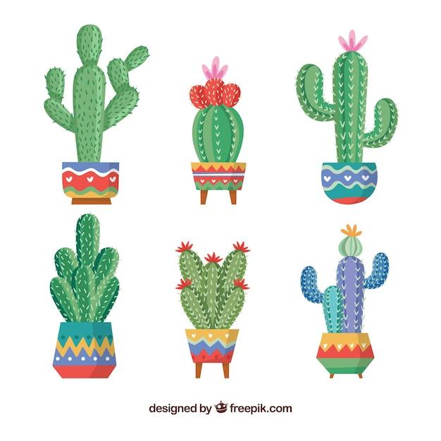 Colección creativa de cactus Vector Premium