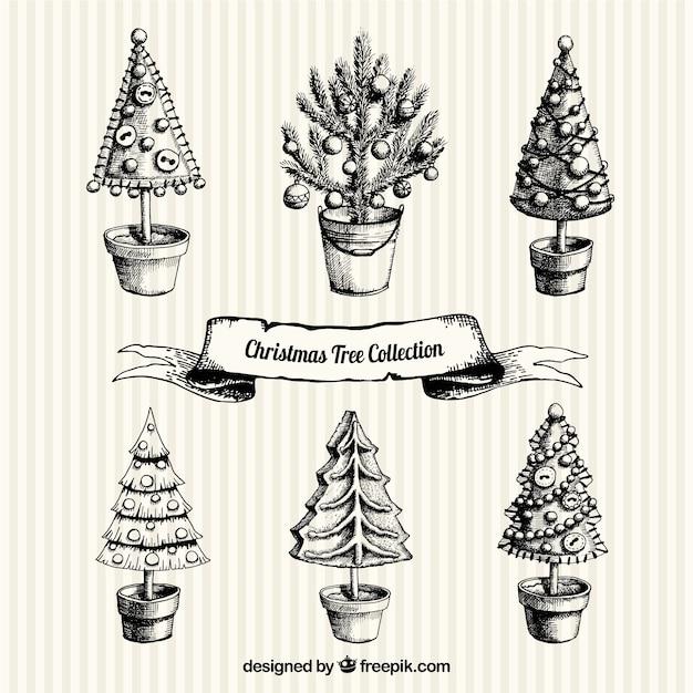 good coleccin de rboles de navidad dibujados a mano vector premium