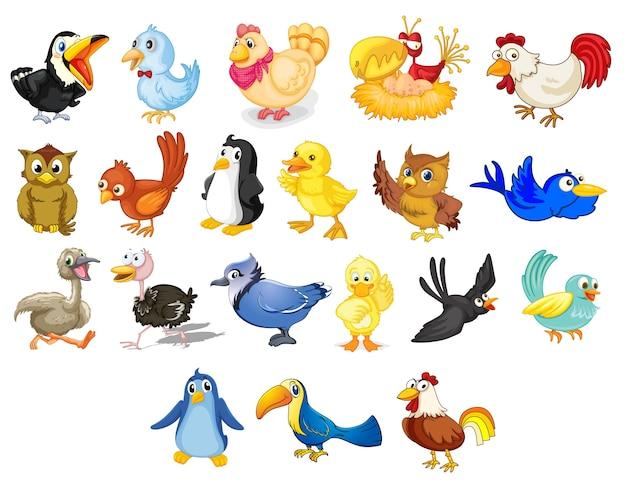 Colección De Aves De Dibujos Animados Mixto En Blanco