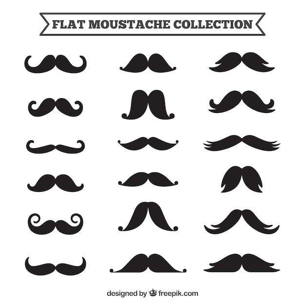 Colección de diferentes diseños de bigotes | Descargar Vectores gratis