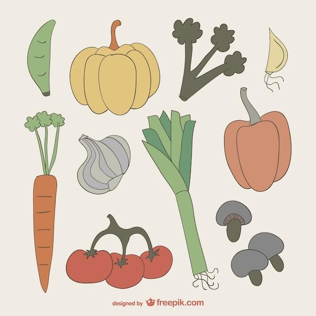 Colección De Dibujos De Verduras De Colores Descargar Vectores Gratis