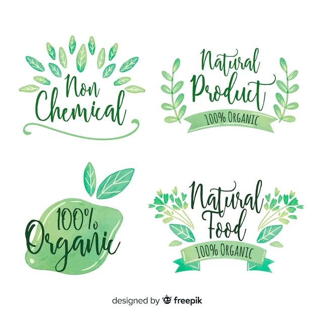 Colección etiquetas comida natural dibujadas a mano vector gratuito