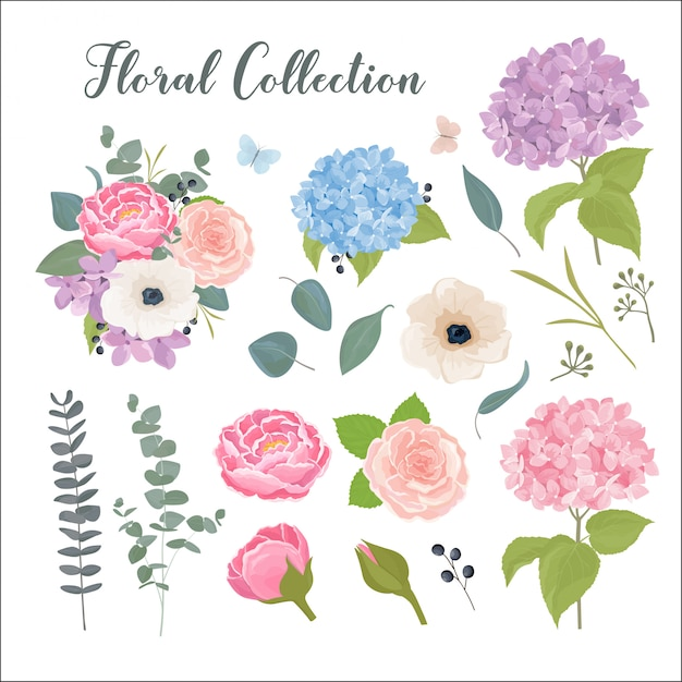 Colección floral con hojas y flores de verano en estilo acuarela ...
