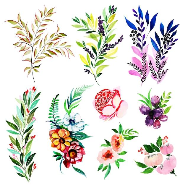 Colección floral y elementos de hojas de primavera de acuarela ...
