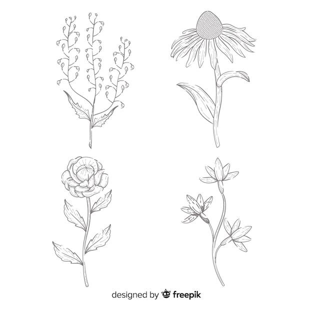 Colección de flores concepto dibujado a mano vector gratuito