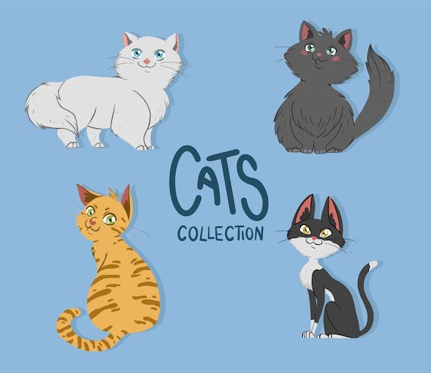Colección de gatos lindos vector gratuito