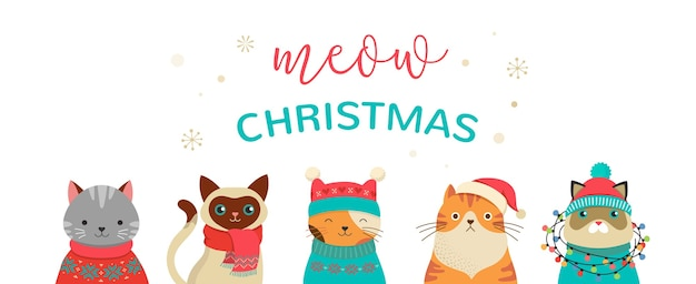Colección de gatos navideños, ilustraciones navideñas de lindos gatos con accesorios como sombreros tejidos, suéteres, bufandas Vector Premium