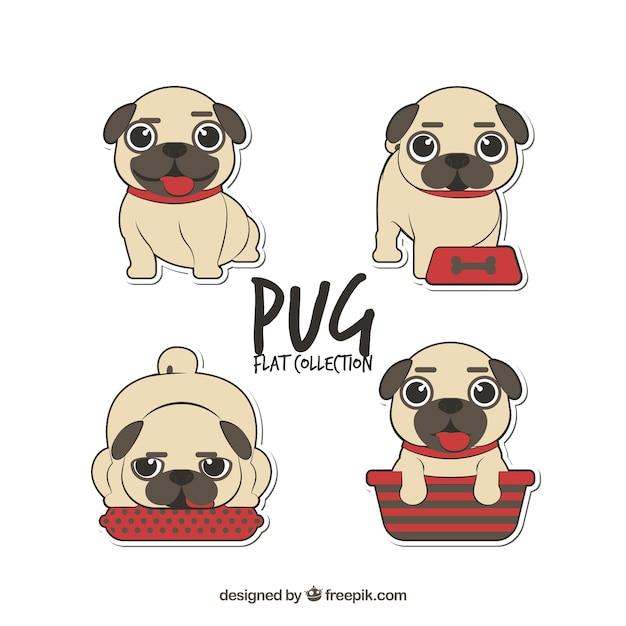 Colección graciosa de pugs vector gratuito