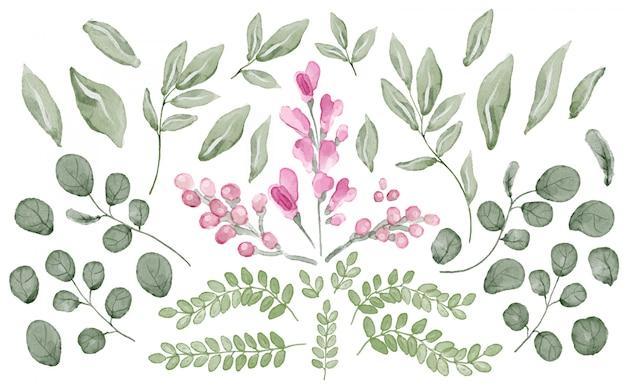 Colección de hojas y flores en acuarela. vector gratuito