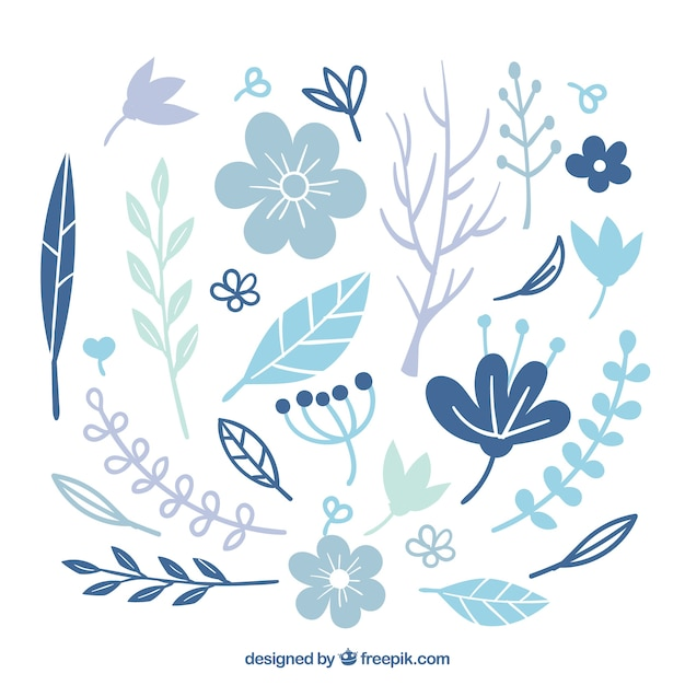 Colección de hojas y flores de invierno azul | Descargar Vectores gratis