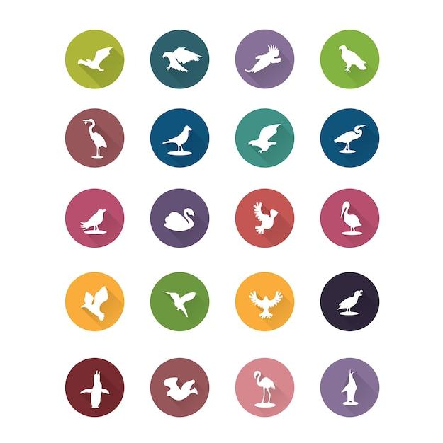 Colección de iconos de pájaros vector gratuito