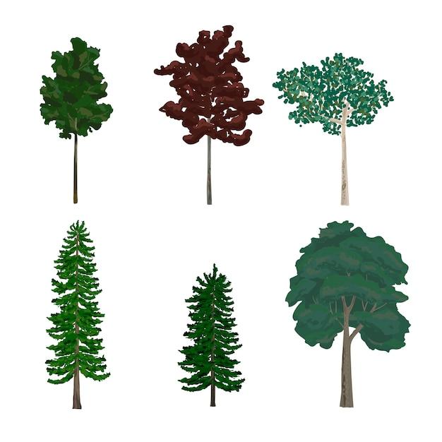 Colección de ilustraciones de árboles de hoja y pino vector gratuito