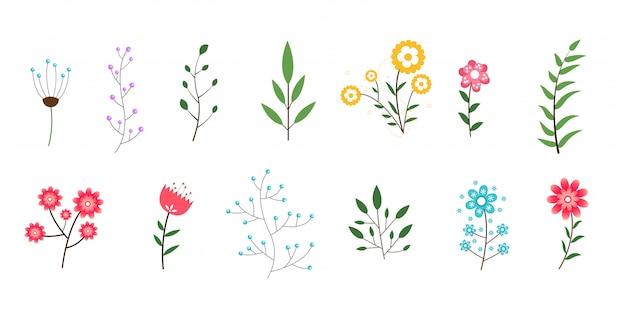 Colección mínima de flores y hojas vector gratuito